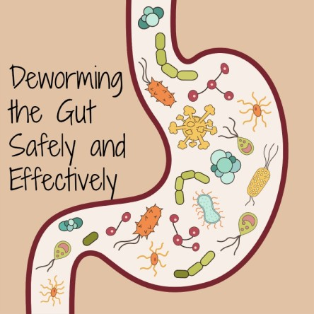 deworming-the-gut.jpg